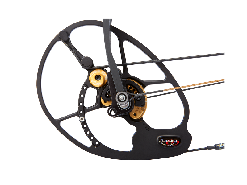 microsync-1 Archery & Bowhunting